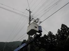 電線のハチの巣駆除
